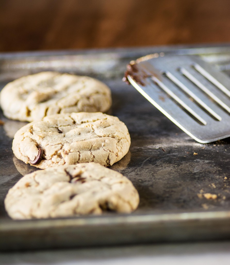 Coconut Walnut Chocolate Chip Cookies from Stirlist.com
